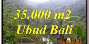 Affordable LAND IN UBUD FOR SALE TJUB674