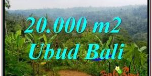 Affordable 20,000 m2 LAND FOR SALE IN UBUD PAYANGAN TJUB678