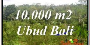 Exotic 10,500 m2 LAND IN UBUD BALI FOR SALE TJUB681
