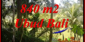 Affordable Property Land in Ubud Bali for sale TJUB685