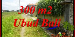 Exotic Property Land in Ubud Bali for sale TJUB687