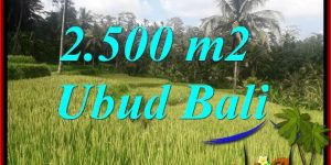 FOR sale Affordable Property Land in Ubud Bali TJUB690