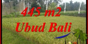 Affordable 445 m2 Land for sale in Ubud Bali TJUB695