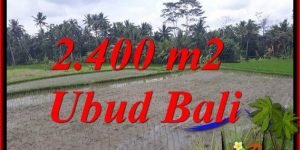 Beautiful 2,400 m2 Land sale in Ubud Bali TJUB697
