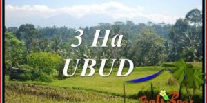 FOR sale Affordable Property Land in Ubud TJUB718