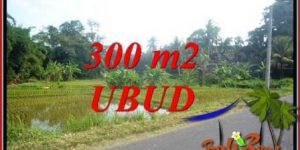 Beautiful Property Sentral Ubud 300 m2 Land for sale TJUB730