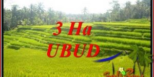 FOR sale Exotic Land in Ubud Tegalalang Bali TJUB733