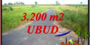 Affordable 3,200 m2 Land sale in Ubud Bali TJUB736