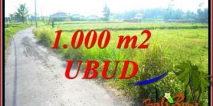 Affordable Ubud Bali 1,000 m2 Land for sale TJUB739