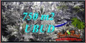 750 m2 Land sale in Ubud Bali TJUB742