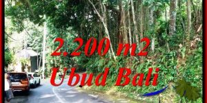Exotic 2,200 m2 LAND IN SENTRAL UBUD FOR SALE TJUB768