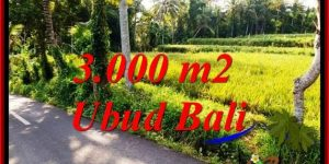 Affordable UBUD BALI 3,000 m2 LAND FOR SALE TJUB771