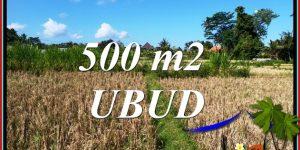 Beautiful PROPERTY 500 m2 LAND for SALE in UBUD TJUB810