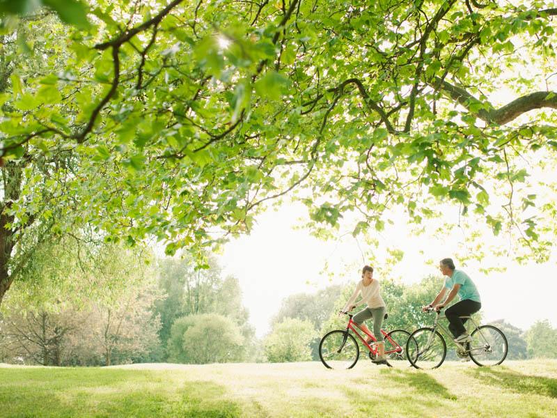 fietstocht landgoed halsaf