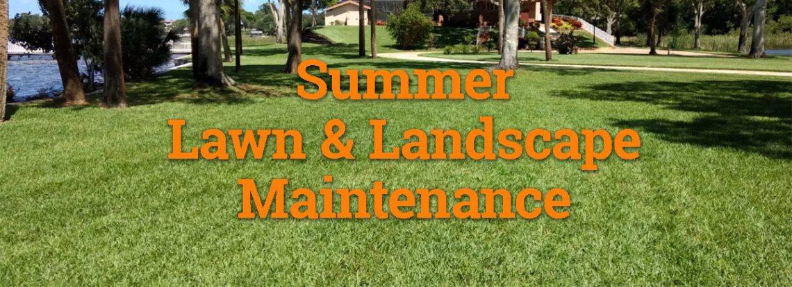 Summer Yard and Landscape Maintenance