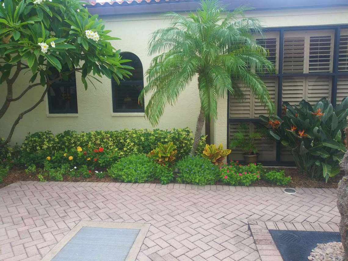 patio 5