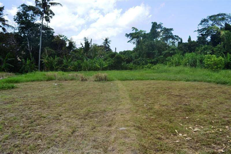 Land for sale in Canggu Bali 885 m2 in Canggu Pererenan
