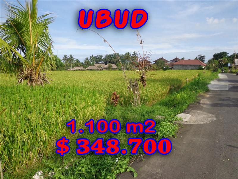 Land for sale in Ubud tropical jungle view in Ubud Center Bali