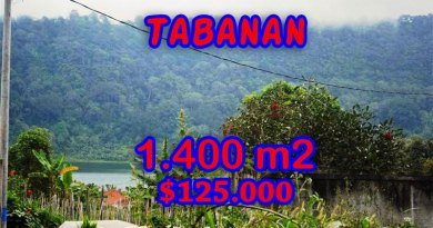 Tabanan-Land-for-sale