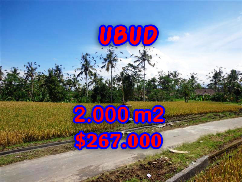 Land in Bali for sale, astounding view in Ubud Bali – TJUB246