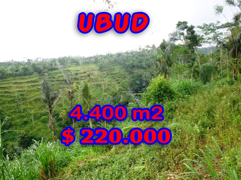 Land in Bali for sale, extraordinary view in Ubud Pejeng – TJUB251
