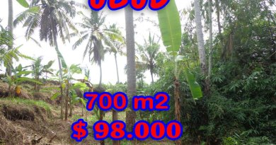 Land-in-Ubud-for-sale