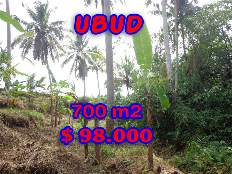 Land for sale in Bali, astonishing view in Ubud Tegalalang Bali – TJUB245