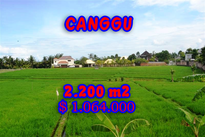 Astounding Property for sale in Bali, Canggu land for sale – TJCG105