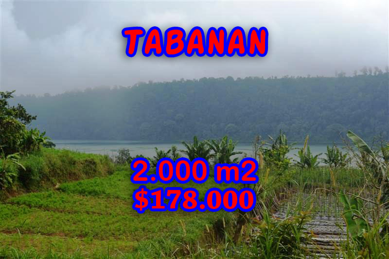 Fantastic Land for sale in Bali, lake view in Tabanan Bedugul Bali – TJTB061