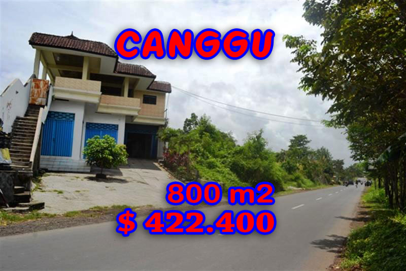 Exceptional Land for sale in Bali, Beautiful Rice fields view  in Canggu Cemagi – TJCG094