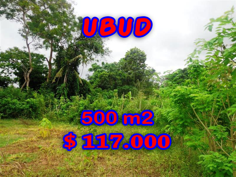 Bali land for sale, Amazing rice fields view in Ubud Center – TJUB283
