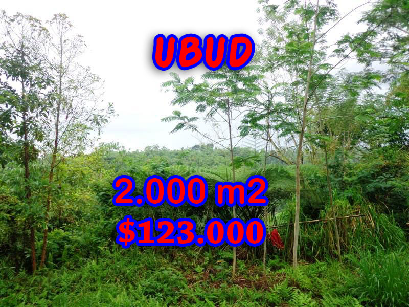 Land for sale in Ubud Tegalalang, Magnificent Property in Bali  – 2.000 sqm @ $ 61