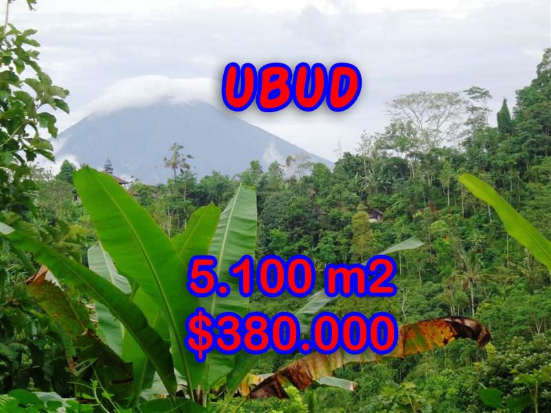 Outstanding Property for sale in Bali, land for sale in Ubud Bali – 5.100 sqm @ $ 74