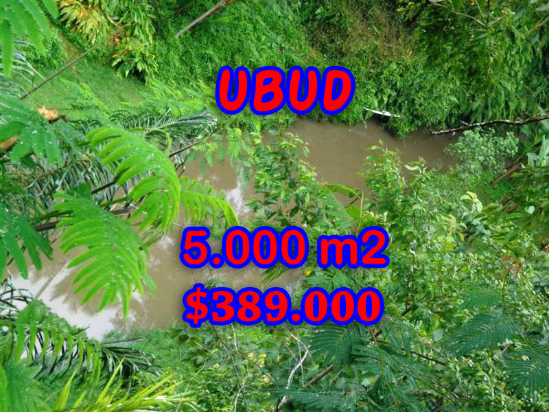 Bali Property for sale, Stunning land for sale in Ubud Bali  – 5.000 sqm @ $ 78