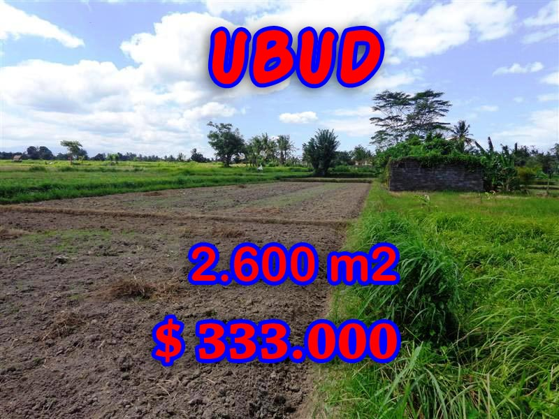 Land for sale in Bali, Amazing rice fields and mountain view in  Ubud Center – TJUB300