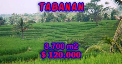 Land in Tabanan Bali