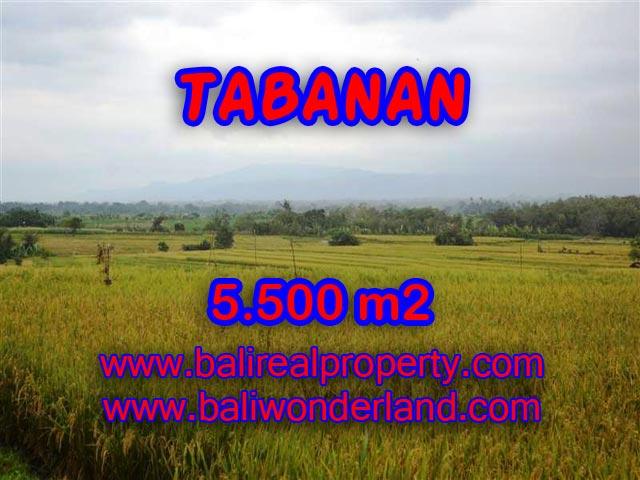 Land for sale in Tabanan Bali, Great view in TABANAN KERAMBITAN – TJTB069