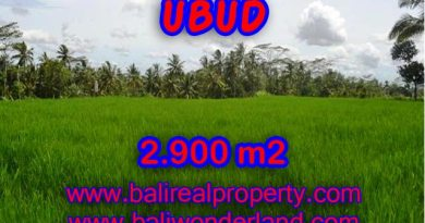 Land in Bali for sale, Stunning view in Ubud Bali – TJUB356