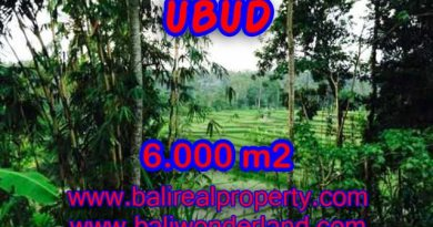 Land for sale in Bali, exceptional view in Ubud Center – TJUB349
