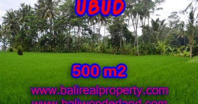 Land in Ubud Bali for sale, Outstanding view in Ubud Center – TJUB364