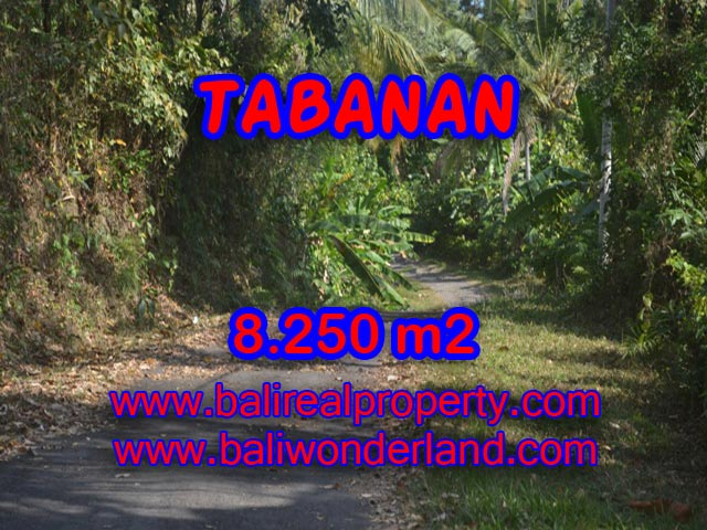 Land in Tabanan Bali for sale, Incredible view in WESTERN TABANAN – TJTB073