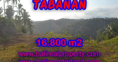 Land in Tabanan for sale, Stunning view in SELEMADEG TABANAN Bali – TJTB075