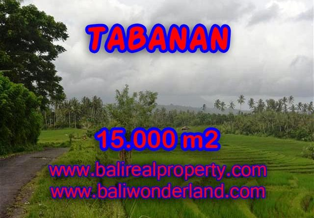 Astounding Property in Bali for sale, Mountain and paddy field view land in Tabanan Bali – TJTB094
