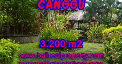 Land in Bali for sale, attractive view in Canggu Bali – TJCG129