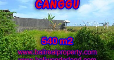 Land for sale in Bali, exceptional view in Canggu – TJCG131