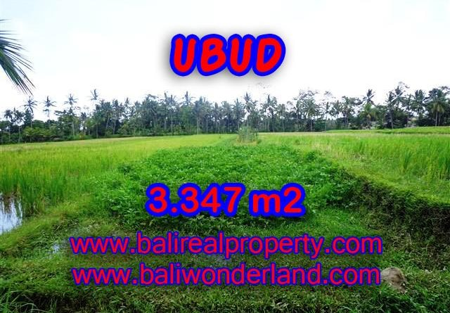 Land in Ubud Bali for sale, Outstanding view in Ubud Center – TJUB380