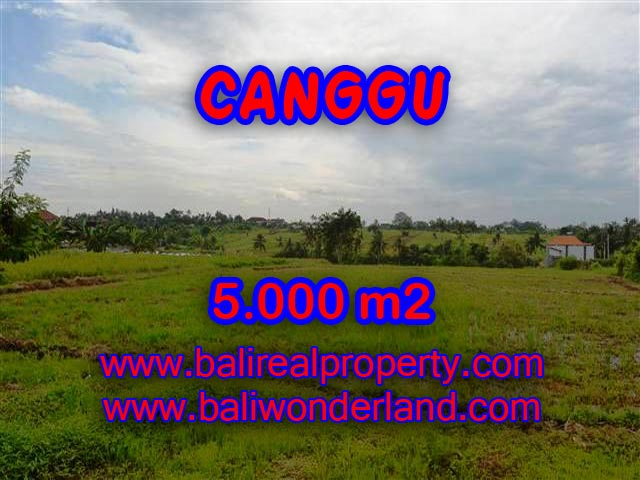 Land for sale in Bali, exotic view in Canggu Babakan Bali – TJCG132