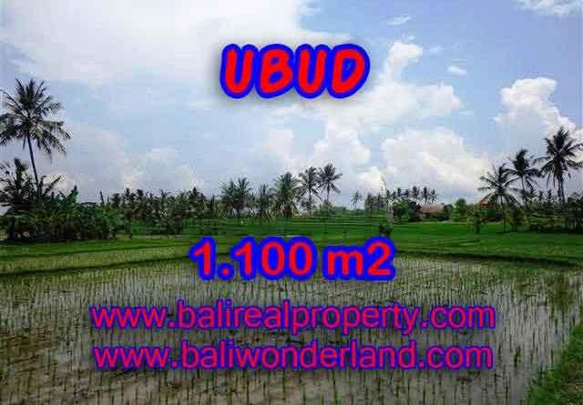 Land in Ubud Bali for sale, nice view in Ubud Center Bali – TJUB376