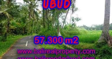 Exotic LAND FOR SALE IN UBUD Bali, beautiful rice paddy view in Ubud Tampak siring– TJUB377