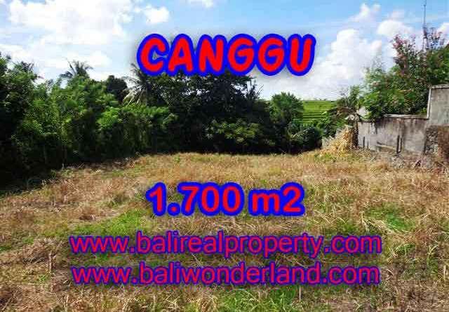 Land in Bali for sale, great view in Canggu Bali – TJCG143